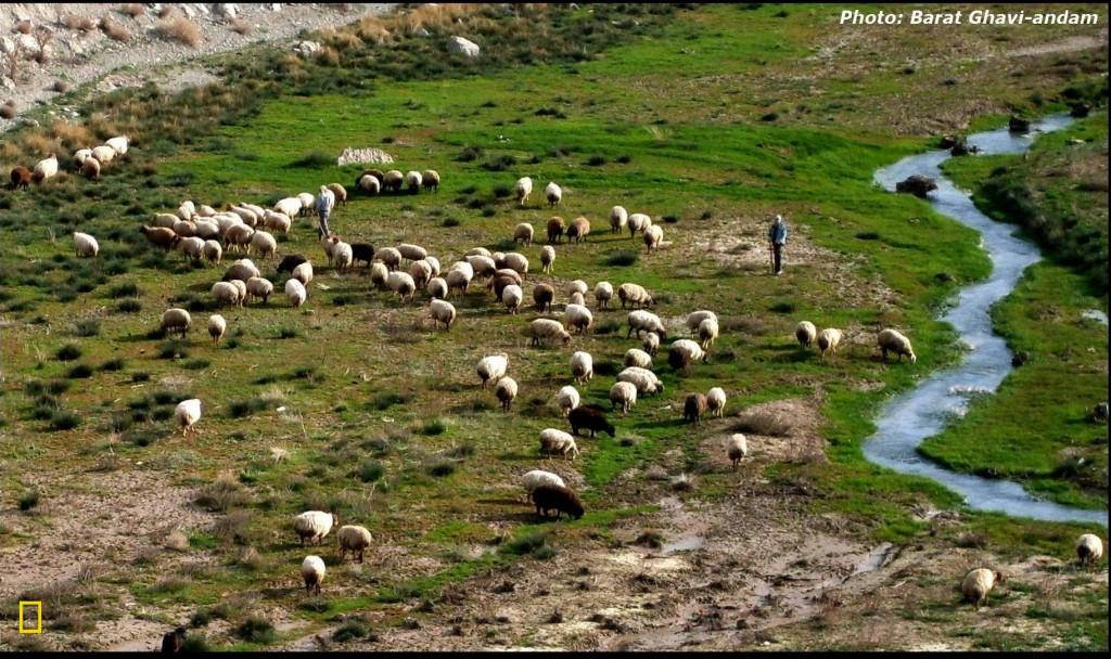 Ev wêne di Newroza 2011'ê li derûdora bendava Tebareka Qûçanê hatiye kişandin.