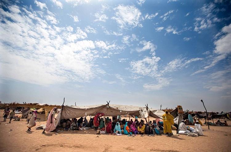 Sudaniyên Başûr yên ku ji mal û warên xwe reviyan, xwe spastin baregehên Kalma û El Selamê yên Herêma Darfurê. Li gorî daneyên Komîseriya Bilind a Penaberan a Neteweyên Yêkbuyî, mîlyonek û nîv penaberên Sudanê reviyane herêmên din ên welêt, nîv milyon jî reviyane welatên din. [Albert Gonzalez Farran-Unamid, Anadolu Ajansı/Getty]
