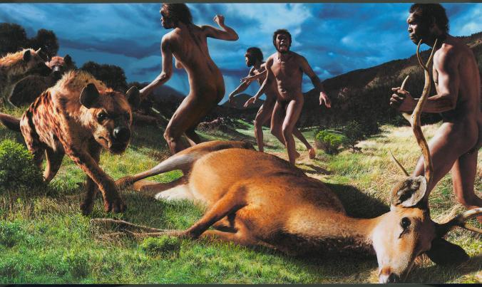 Di vî wêneyî de jî ji bermayiyên arkeolojîk sûd hatine wergirtin û xuya dike ku Homo Erectuseke jin bi keviran nahêle bila keftar xwe bigihîne pezkoviya li erdê. [Wêne: John Gurche, National Geographic Creative]